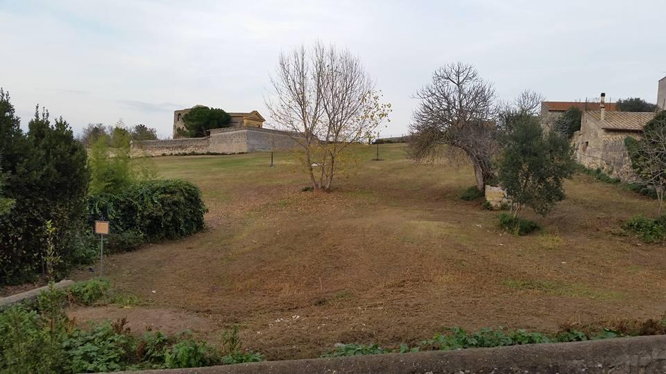 Campo Cialdi Tarquinia