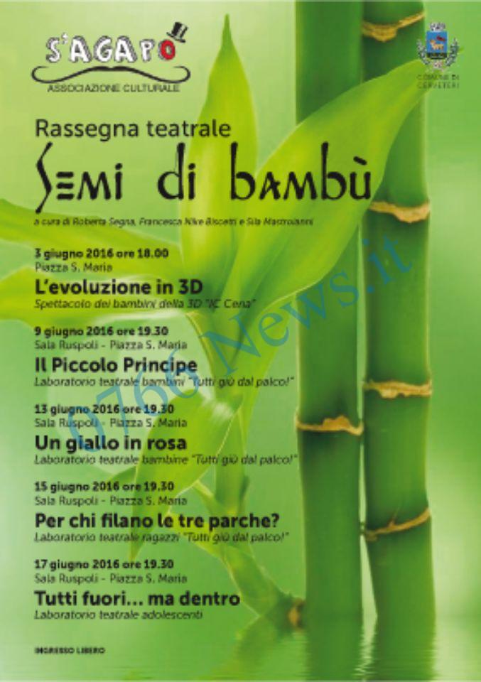 Semi di bamb a cerveteri rassegna teatrale per bambini for Semi di bambu