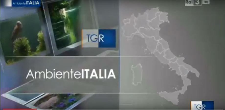 ambiente italia