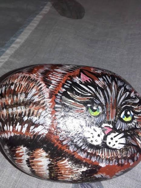 gatto su pietra