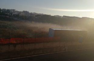 nebbia gedila