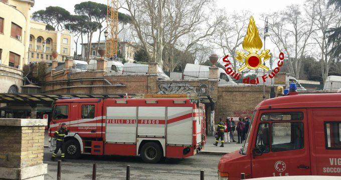 vvf roma