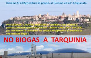 manifestazione no biogas
