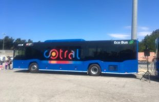 nuovo bus cotral