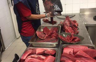 sequestro pesce roma