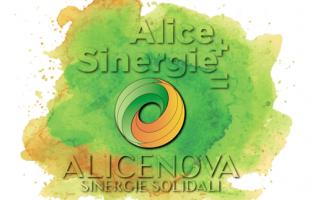 alicenova