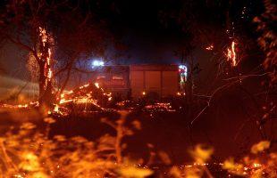 incendio campo di mare010