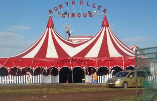 circo ronny roller
