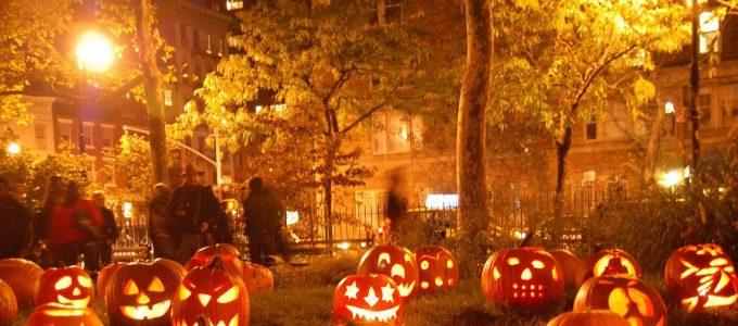 Halloween-Pumpkins-Field