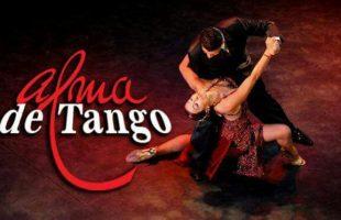 alma tango cerveteri