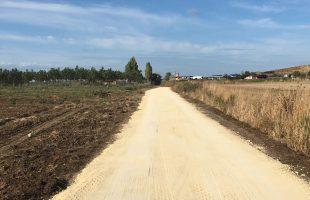 strada università agraria