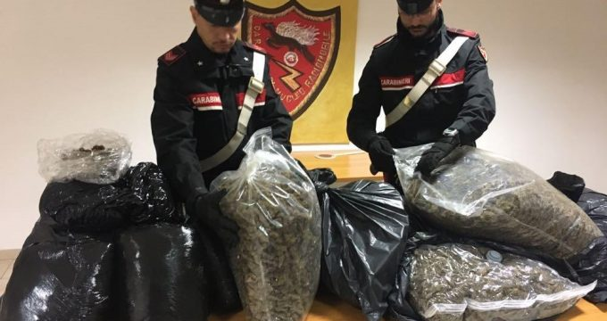 FRASCATI - 70 kg di droga sequestrati dai Carabinieri (4)