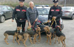BRACCIANO - I Carabinieri riconsegnano i cani al proprietario