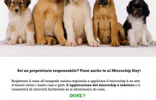 locandinamicrochipgratuitocani-page-001