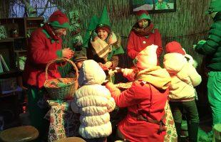 Elfi al Villaggio di Babbo tolfa