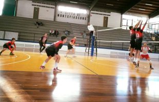 cv volley maschile