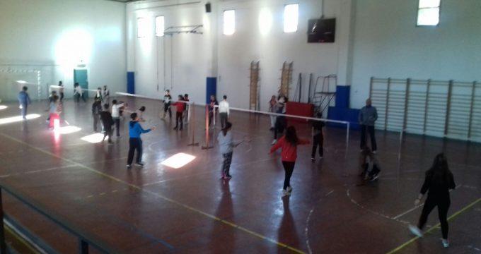 vigna badminton