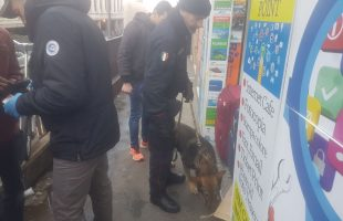 I controlli dei Carabinieri a Termini e Tiburtina (14)