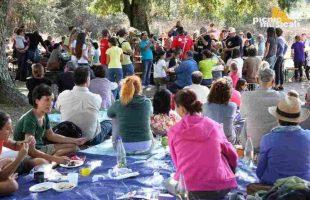 picnic_musicali