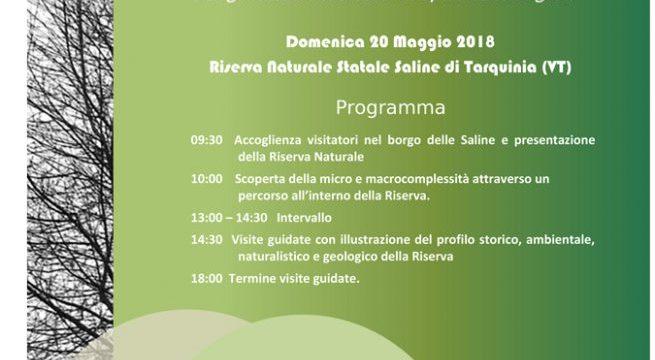 locandina-Saline-Tarquinia-Riservamica-2018-e1526384740388